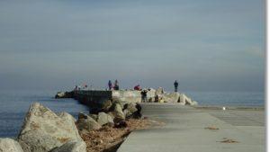 釣り人でにぎわう冬の鳥の海導流堤