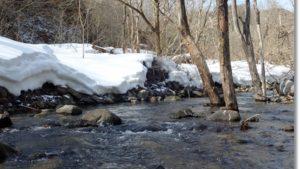川岸に雪残る早春の長谷倉川